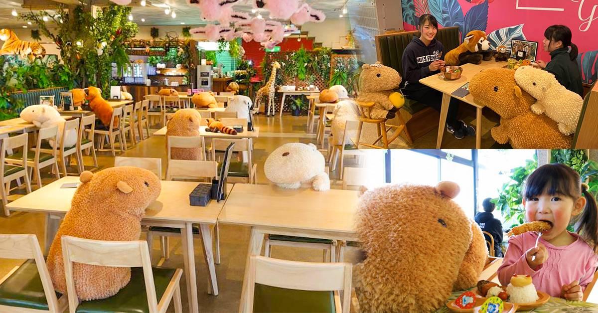 【公仔太疗愈了!】日本动物园咖啡馆布满水豚毛绒玩具!暖心提醒顾客保持社交距离!