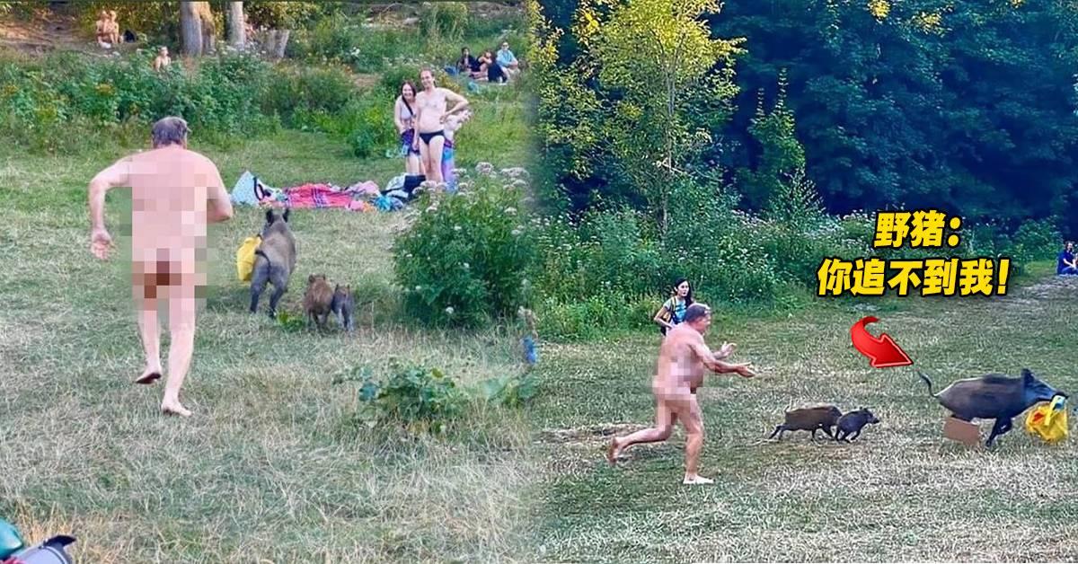 野猪叼走了男子黄色背包!男子顾不上全裸的自己,狂追野猪!