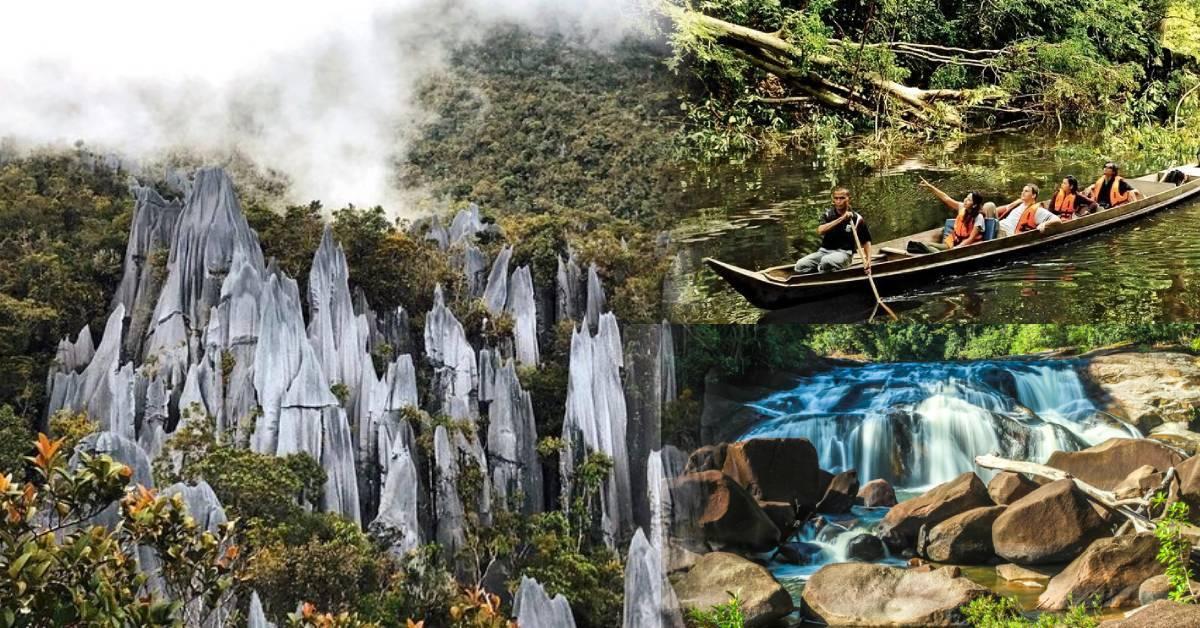 投入大自然的怀抱!盘点大马5个绝美国家公园!一起看看拥有1.3亿年历史的热带雨林吧!