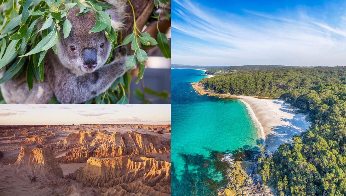 疫情后的旅游首选!213个玩转澳洲的旅游攻略!