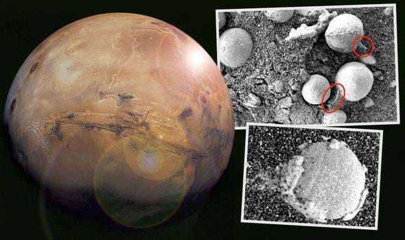有生命存在?!火星上疑出现蘑菇!已经不是首次被发现?!