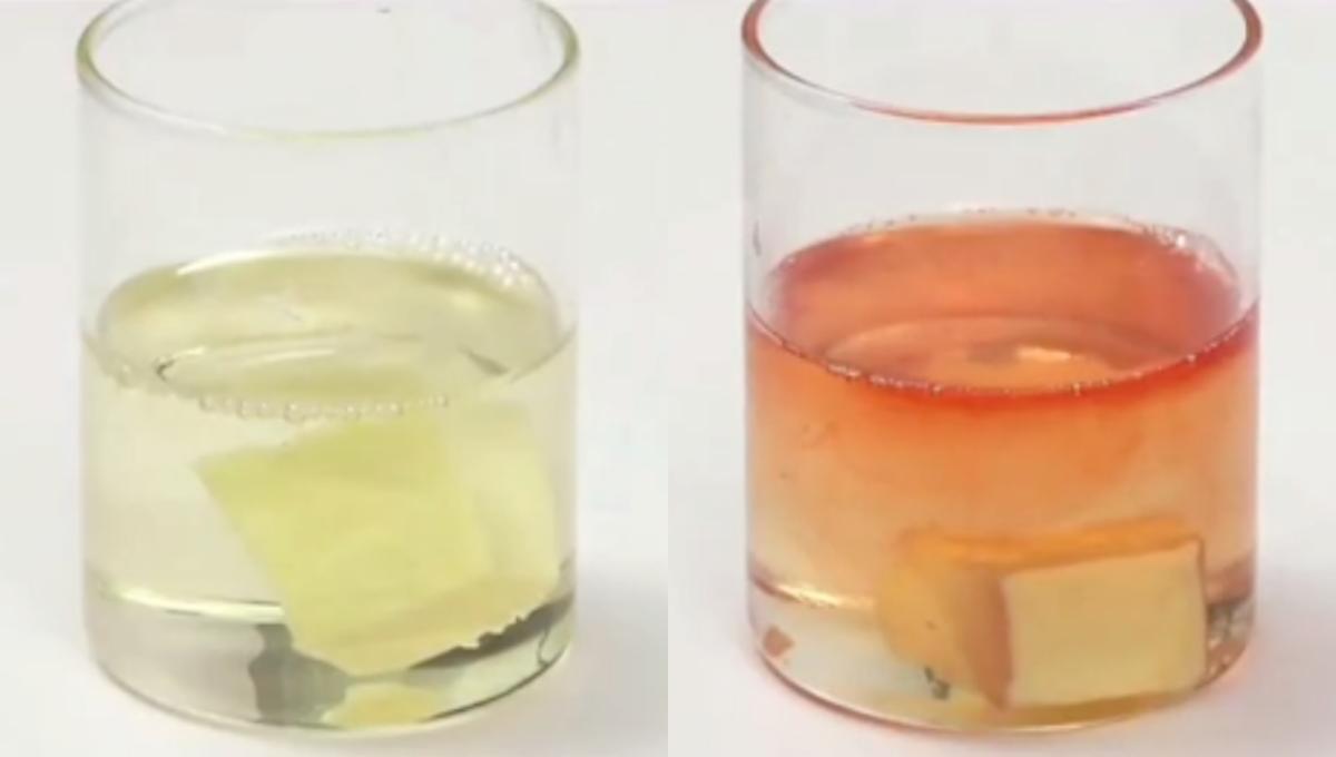 【厨房小贴士】你每天在吃的食用油真的安全吗? 这个超简单的测试能找出答案!