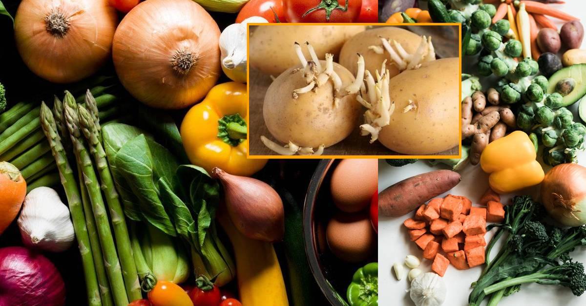 食物一旦有这些迹象都不能再吃!原来发芽的土豆会产生毒素!