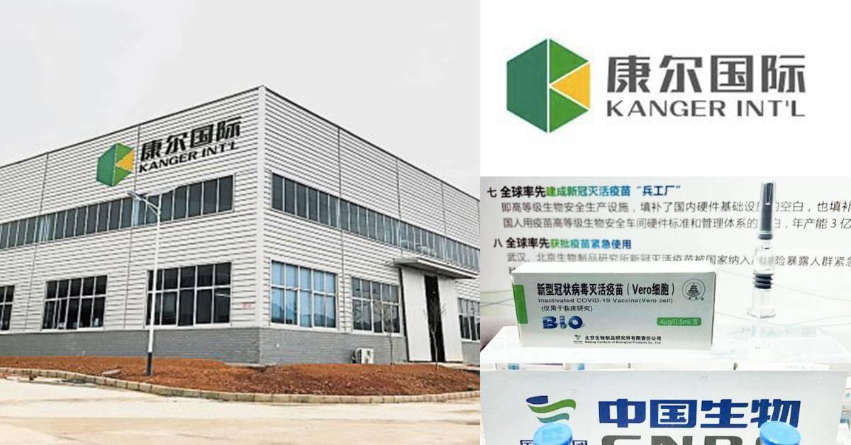 好消息!大马公司取得中国疫苗经销权!继手套之后,康尔国际进军疫苗领域!