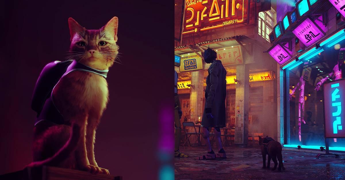 流浪猫探险新作《Stray》延期推出!官方:登陆PC、PS4和PS5平台!