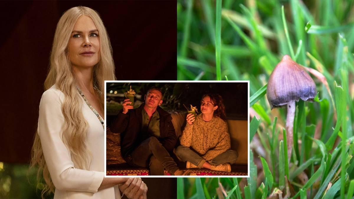 美剧《Nine Perfect Strangers》引发社会舆论!Nicole Kidman完美演绎心理治疗师,胆小勿入!