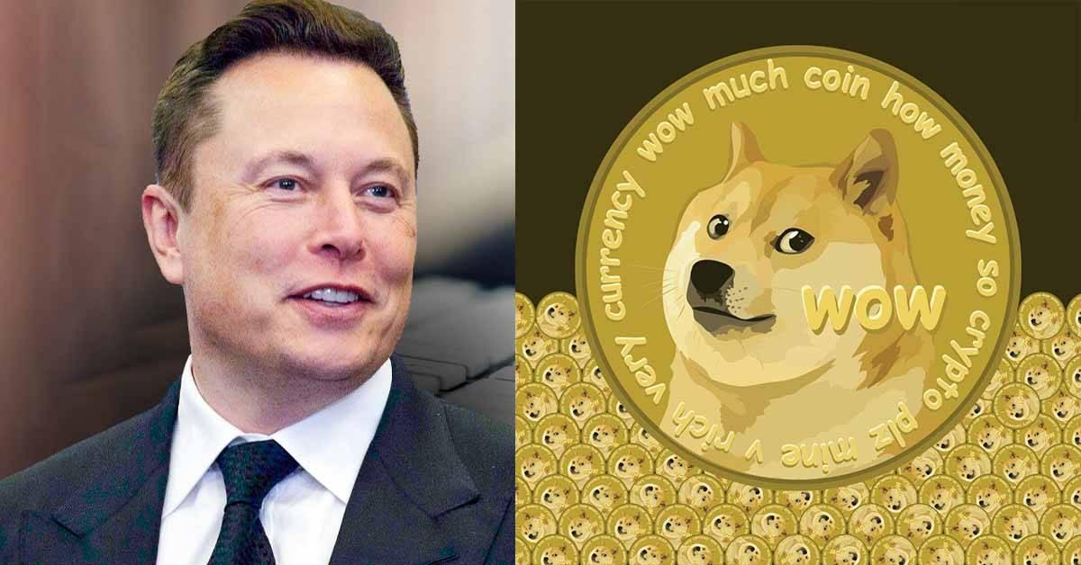"""Elon Musk开玩笑称狗狗币是骗局!结果引发所有加密货币吃了""""泻药""""大跌!"""