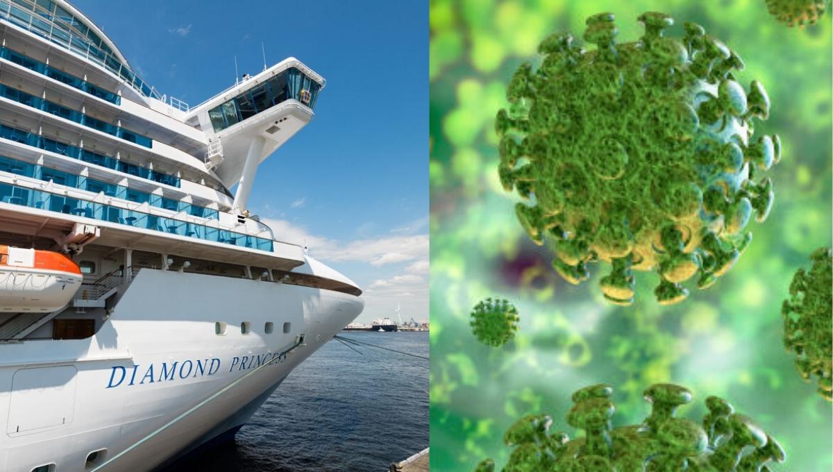 冠状病毒存活时间长达17日?!钻石公主号乘客下船后发现仍有存活病毒!