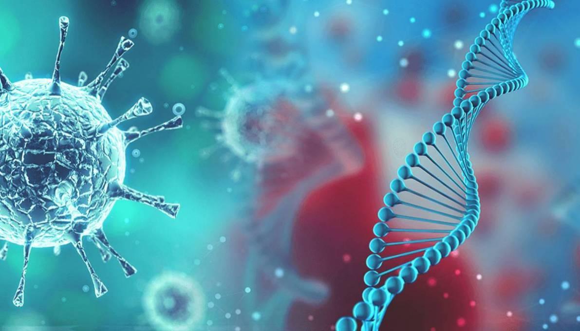 冠状病毒来源于自然界?专家:感染人类后基因突变!