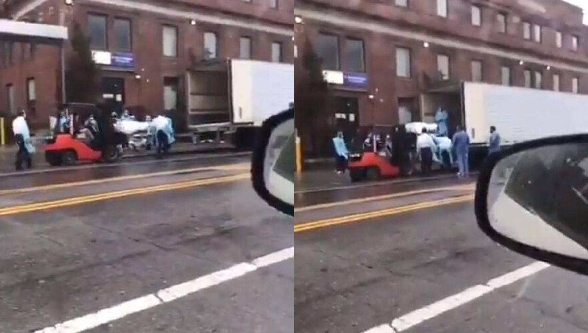 纽约死亡人数太多!医院调用叉车和冷冻货柜车来转载尸体!