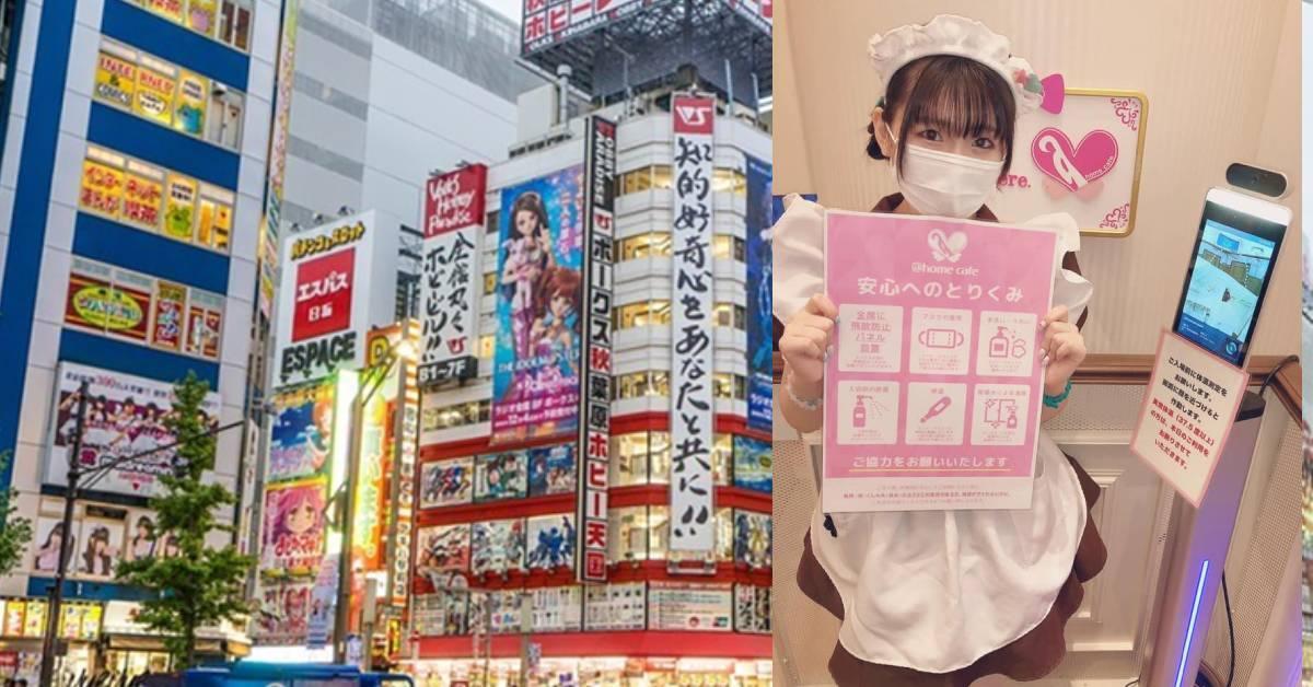 """日本再爆群聚感染!连著名的女仆咖啡厅都接连""""中招""""?"""